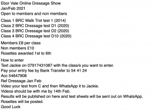 Ebor Vale Online Dressage - Jan/Feb